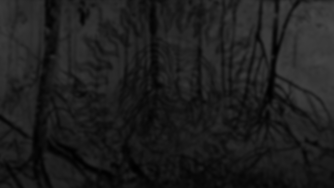 Tattoo-Shed-Website-Background.png