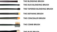 Brushes Made Easy - The BASE Pro Artists Brush Guide