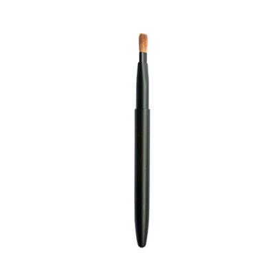 Lip brush, makeup brush