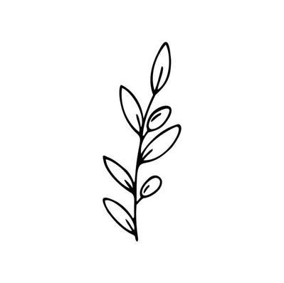 Tous nos produits contiennent notre huile d'olive extra vierge récoltée à la propriété