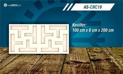 AS-CNC19_edited.jpg