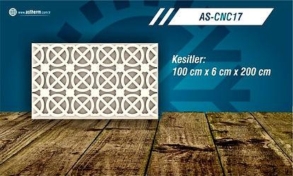 AS-CNC17_edited.jpg
