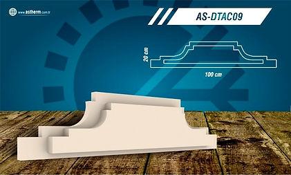 AS-DTAC09_edited.jpg