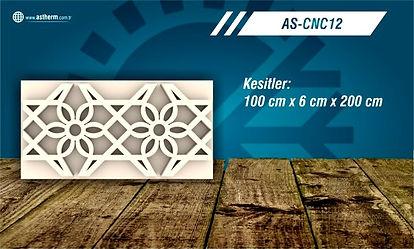 AS-CNC12_edited.jpg