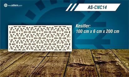 AS-CNC14_edited.jpg