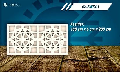 AS-CNC01_edited.jpg