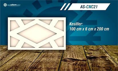 AS-CNC21_edited.jpg