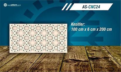AS-CNC24_edited.jpg