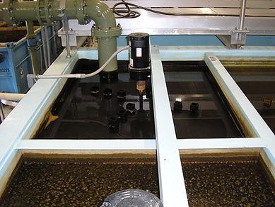 Packaged Water Treatment.JPG