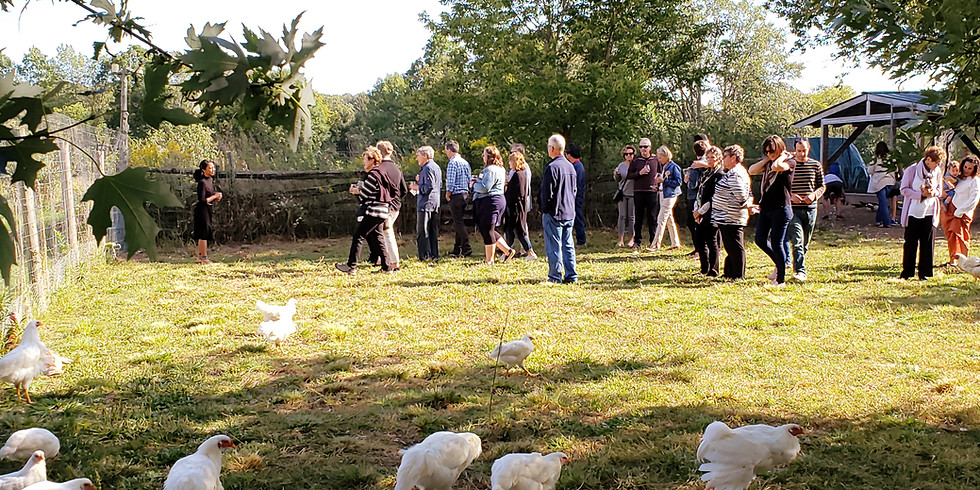 Sights Sounds and flavours. A guided farm tour.