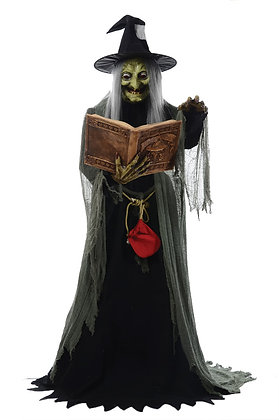 Spell-Speaking Witch