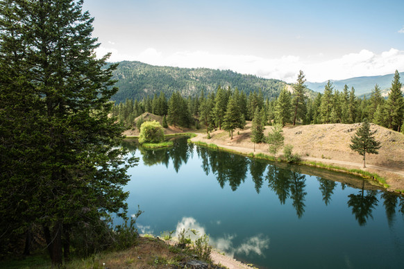 Private Lake View