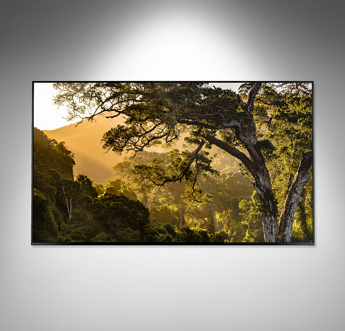 65inch product photo (1).png