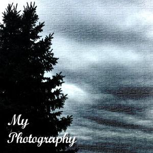 PHOTO LINK.jpg