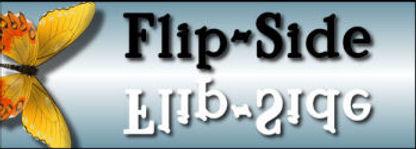 minipanelFLIPSIDE.jpg