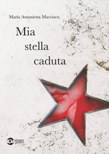"""""""Mia stella caduta"""" di Maria Antonietta Macciocu. Recensione di Tiziana Viganò"""