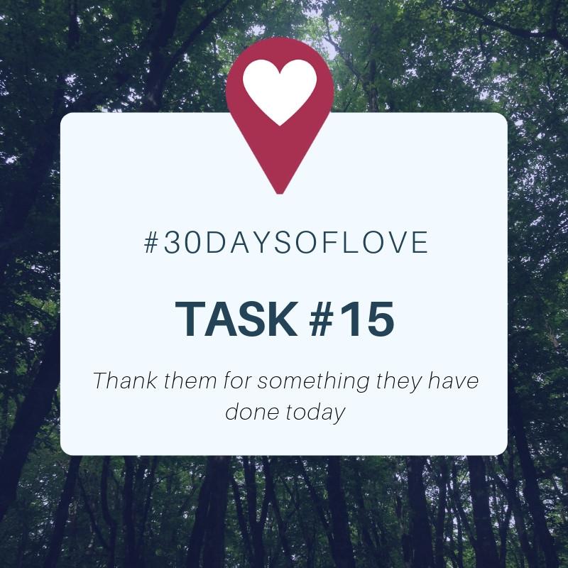Task 15