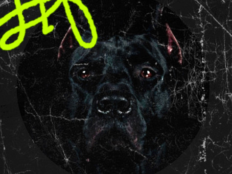 RoyalCity LiF | BLACK.DOG RIDDIM Campaign