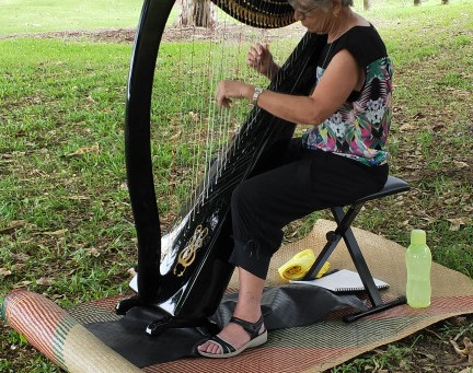 Harvest Share Harpist