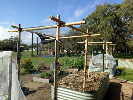 Cultivating Community Gardens Grant