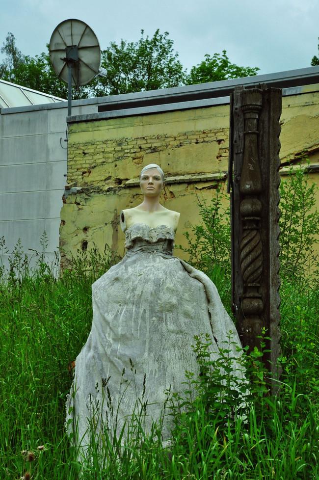 Queen of the Yard.jpg