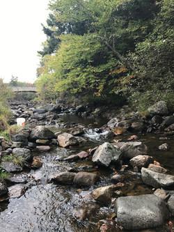 Scoodic Brook