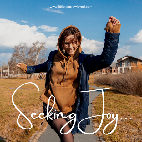 Seeking Joy...