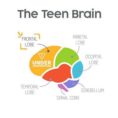 Teen-Brain.jpg