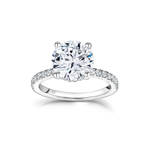 Sandy Round Diamond Hidden Halo Engagement Ring in White Gold
