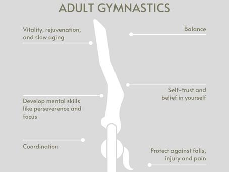 Benefits of Taking Up Adult Gymnastics