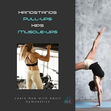hs pullups adult gymnastics.png