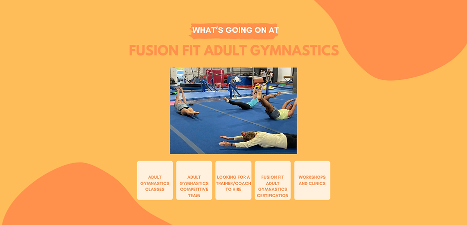 whats going on at ff adult gymnastics website strip.png