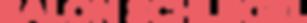 Schlegel_Logoschriftzug.png