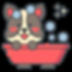 icone-lex-e-lulu-1.png