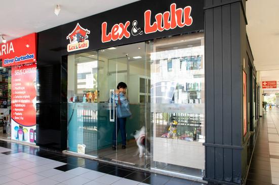 LexLulu-18.jpg