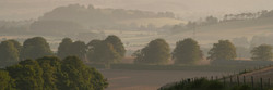 he Meon Valley, home of the vineyard