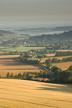 Meon Valley, home of East Meon Vineyard
