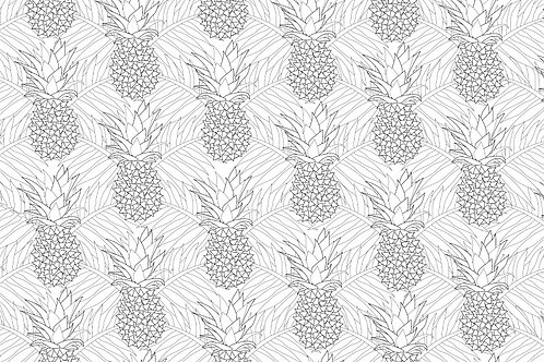 PINEAPPLES COLOURING PAGE