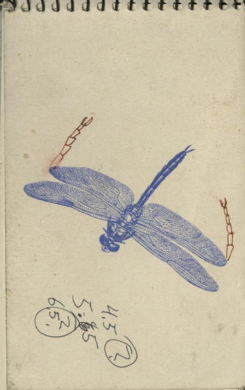 Book12_001