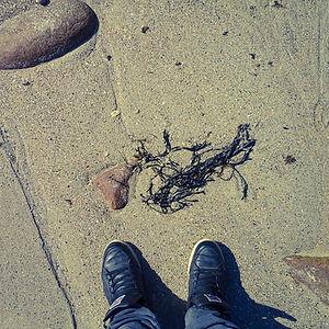 Sand of the beach!