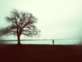 L'inconnu du lac.jpg