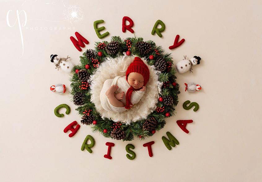 CHRISTMASNEST.jpg