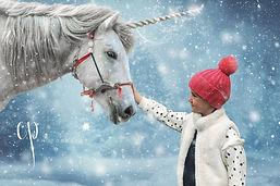ChristmasUnicorn-Orla.jpg