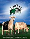 Elite catalog draft-1.jpg