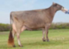 BFK55402 Top Acres PS Whazoo-ETdonor0714