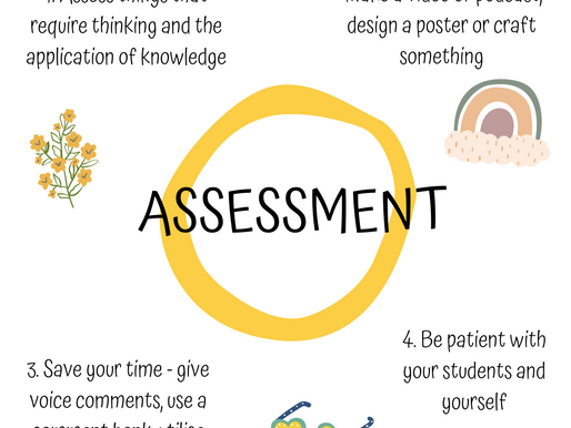 Assessment and Giving Feedback Online