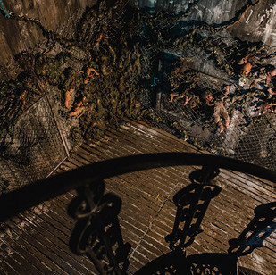 Resident Evil - Terrace.jpg