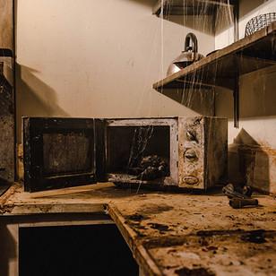 Resident Evil - Microwave.jpg