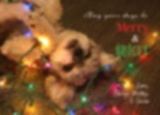 holidaycard2015vb.jpg