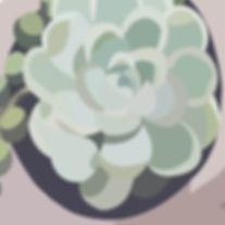 succulentwix.jpg